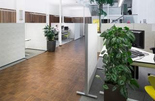Kanceláře v otevřeném prostoru poskytují výhody v komunikaci a interakci.